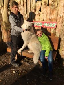 Rike und der Polarwolf